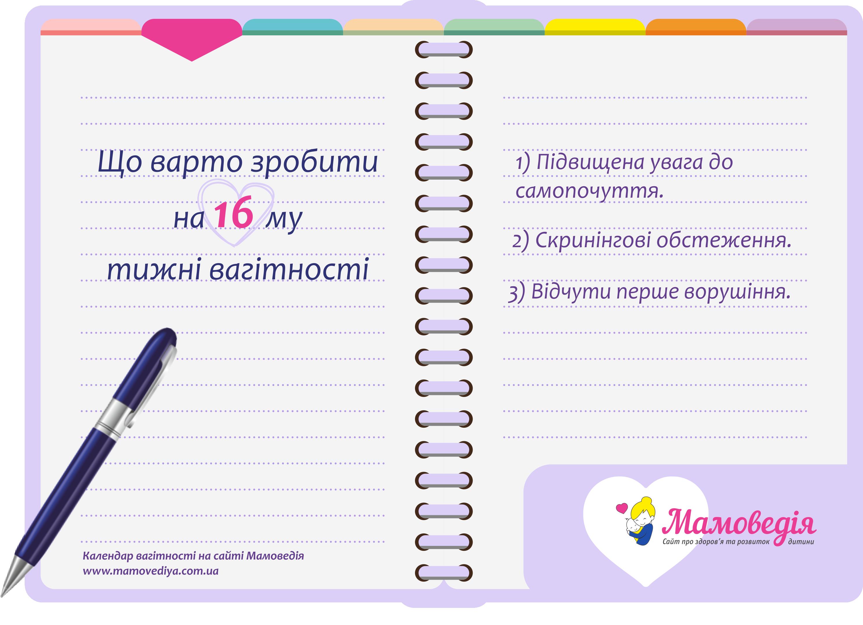 що варто зробити на 16 тижні вагітносіт - календар вагітності