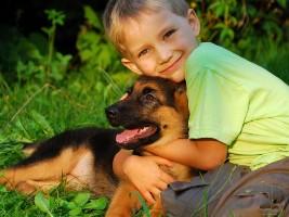 Інфекційні хвороби у дитини, які передаються від тварин
