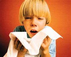 Головні винуватці алергії у дітей
