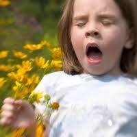 Алергія чи застуда?