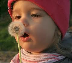 Алергія у дитини – міфи і факти