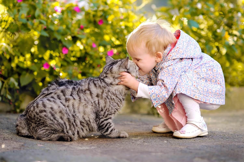 Діти та домашні улюбленці: як обрати тварину для сім'ї