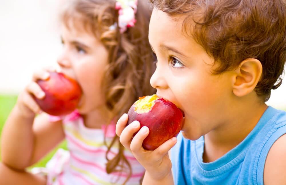 Здоровое питание ребенка: баланс белков, жиров и углеводов